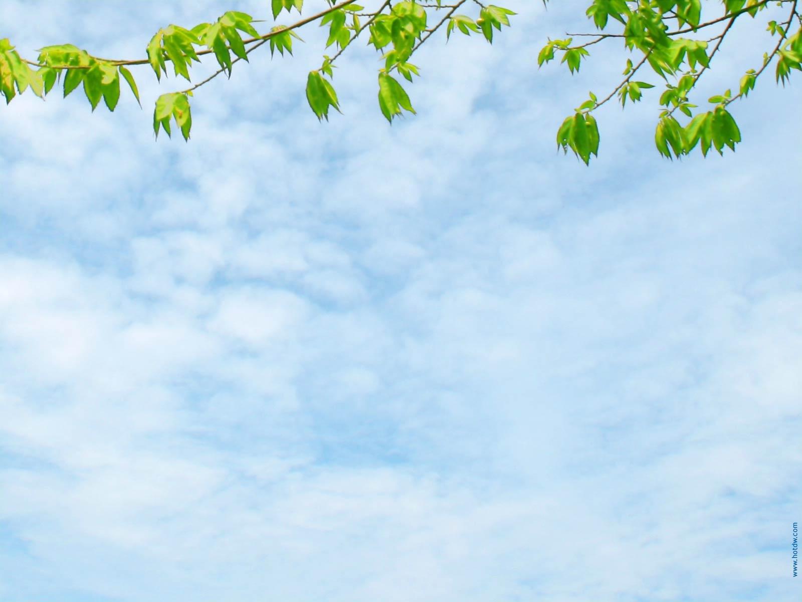 Шаблоны к презентации весна идет презентация скачать бесплатно